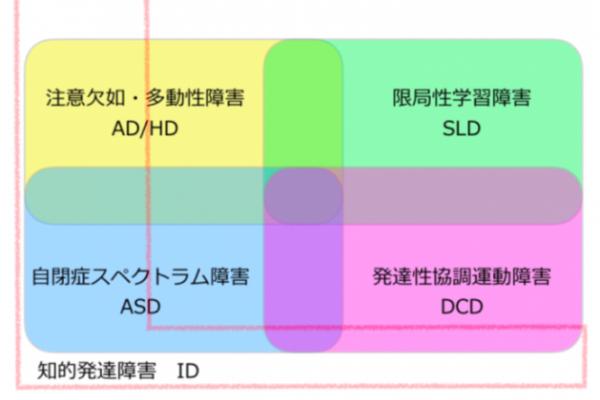 研修】発達性協調運動障害(DCD)に関する勉強会 | ファミリアキッズNEWS